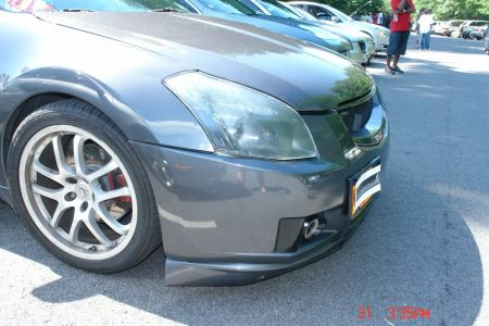 Eastcoastmaxima2011078 (1)