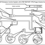 Testing and Eliminating P1447 EVAP Control System Purge Flow Monitoring